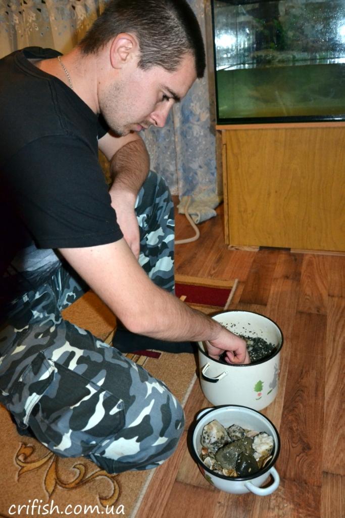 как подготовить аквариум для рыбок фото