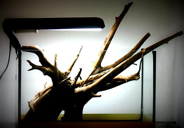 Из чего сделать корягу для аквариума своими