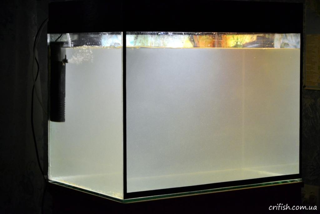 перезапуск аквариума