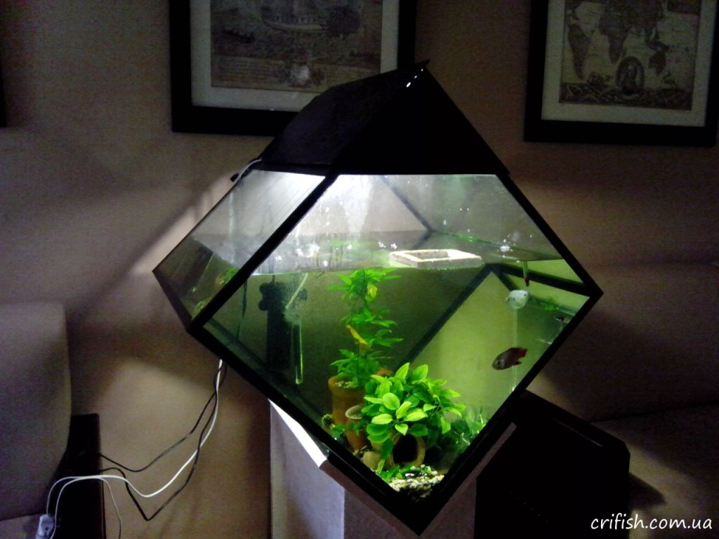 аквариум ромбом